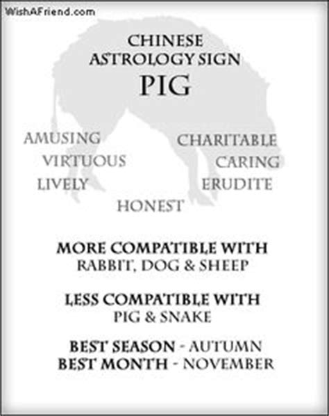 1000 images about astrology cancer chinese zodiac pig
