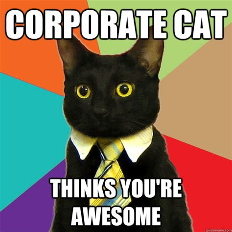 Business Cat Meme - corporate cat thinks you re awesome business cat quickmeme
