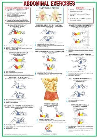 abdominal floor exercise chart workout abdominal exercises exercise floor workouts
