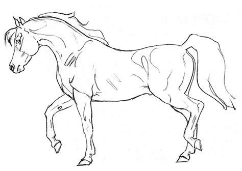 Shoe Colours Black Grey Yl pin thoroughbred stallion on