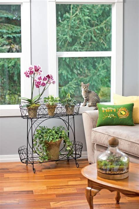 great tools  indoor gardening diy network blog