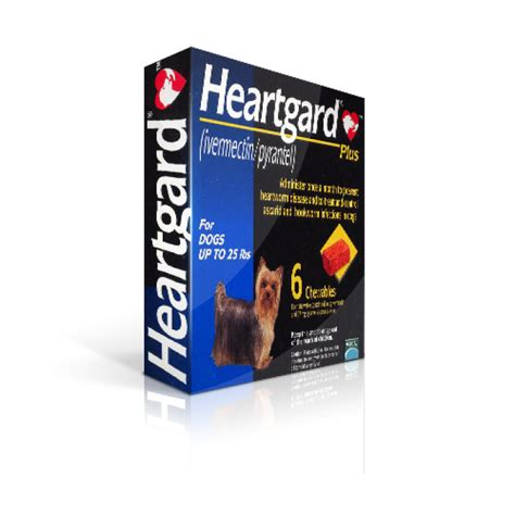 heartworm heartgard plus dogs heartgard plus blue chewable for dogs 25 lbs 6 chewable tablets