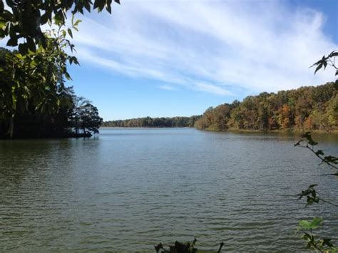 boat rentals near memphis tn beautiful and quiet herb parsons lake collierville