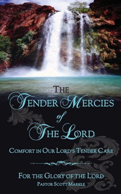 comfort from the lord the tender mercies of the lord comfort in our lord s