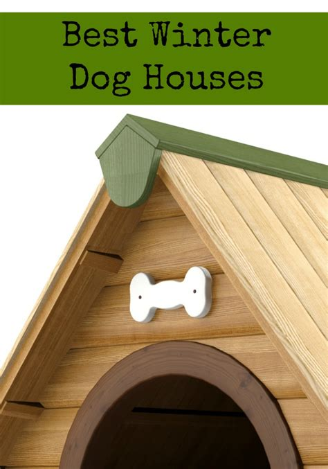 what is the best dog house for cold weather best winter dog houses dogvills