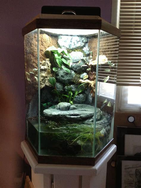 custom  frog tank fresh water fish tank diy