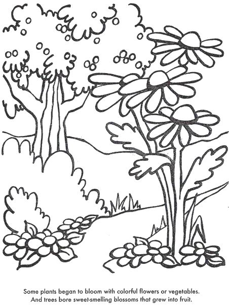 free coloring pages of trees and flowers plants coloring pages