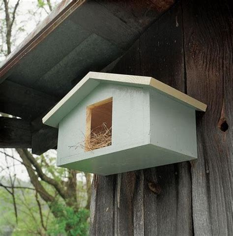 1000 Images About Bird House Ideas On Pinterest Modern Mourning Dove House Plans
