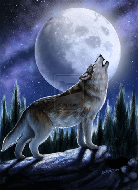 wolves images howling wolf in the moonlight hd wallpaper