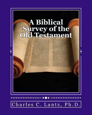 a concise guide to reading the new testament a canonical introduction books a biblical survey of the testament a brief and