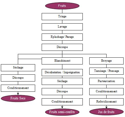 diagramme de fabrication de jus d orange pdf femag industries equipements et unit 233 s compl 233 tes pour la
