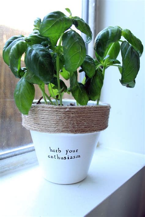 herb  enthusiasm funny gardening quotes indoor