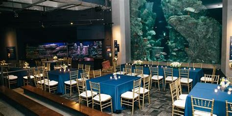 wedding venues south carolina south carolina aquarium weddings get prices for wedding