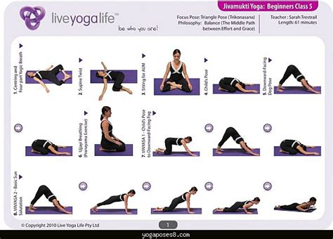 printable yoga poses for seniors basic yoga poses for seniors yoga poses yogaposes com
