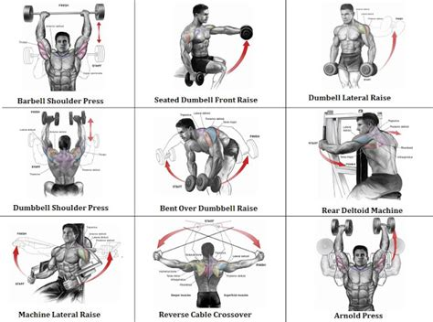 the best shoulder workout for size and strength