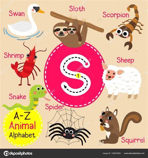 imagenes en ingles con la letra s trazo de letra de alfabeto s ni 241 os lindo zoo de animales