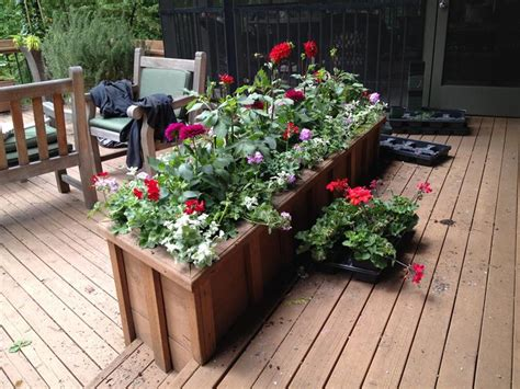 design flower box 21 beautiful flowerbox design ideas