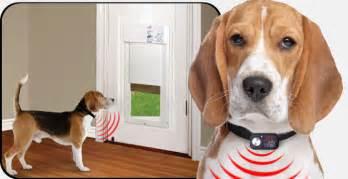 doggie door glass door power pet automatic electronic dog cat doors on sale now