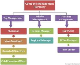 company management hierarchy management hierarchy management