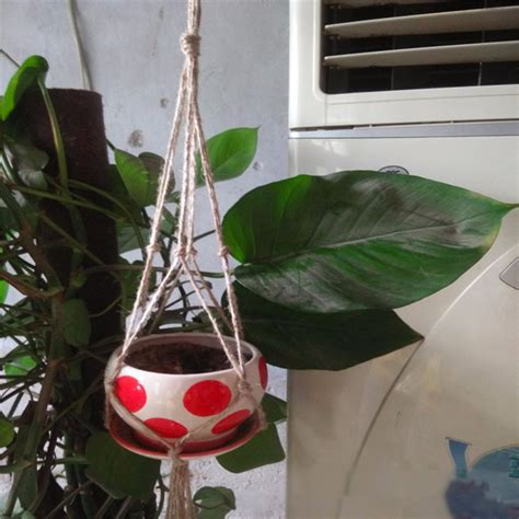 Twine Plant Hanger - handcrafted braided macrame jute twine plant basket hanger