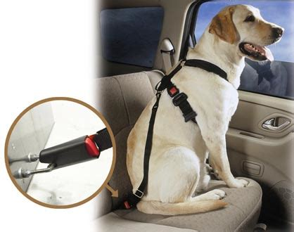 puppy seat belt car seat belts for k9 s will travel