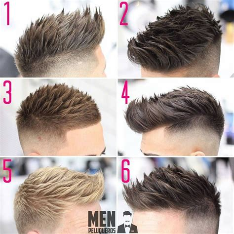 Professional Hair Style Books by Professional Barber Hairdresser ʀᴏᴛᴛᴇʀᴅᴀᴍ