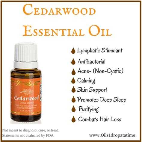 living cedarwood essential 15ml improve focus