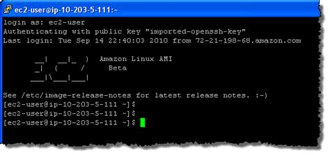 amazon linux introducing the amazon linux ami aws news blog