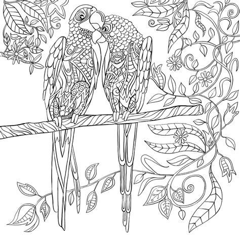 mandala coloring pages livro um reino de cores