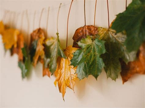 decorar hojas secas decorar con hojas secas las 9 mejores ideas