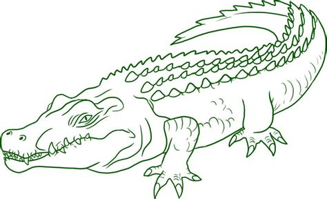 free coloring pages crocodiles