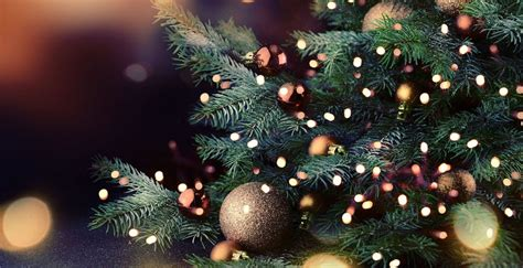 christmas  year holidays   guardian holidays