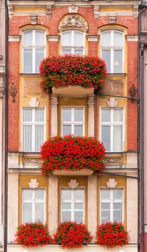 fioriere per davanzale finestra 20120924 dsc0613 mansard balconi fioriere per