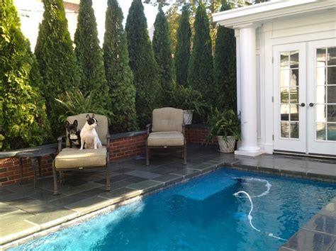 mini pools mini pool backyard house door project