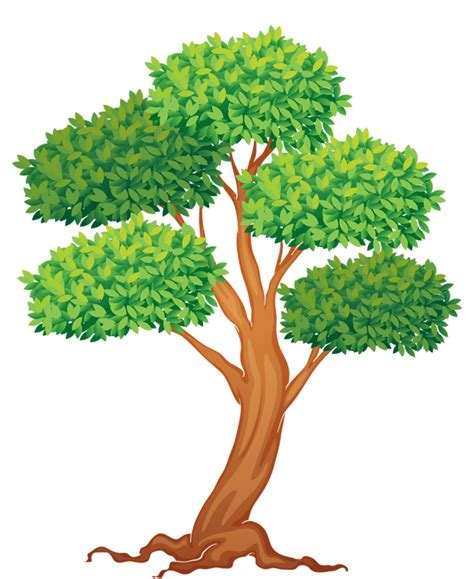 stone lime tree clipart clipground