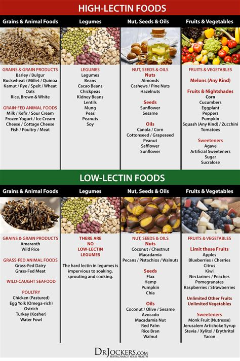 Plant Detox Diet Plan Free by Best 25 Lectins Ideas On 3 Tomatoes Image