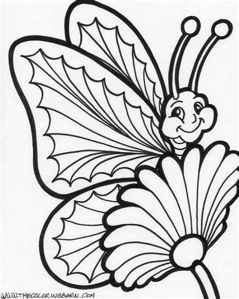 realistic butterfly coloring pages realistic butterfly cliparts co