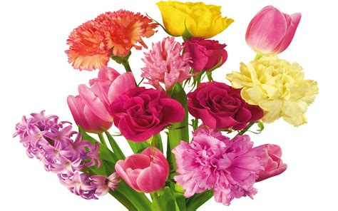 mothers day flowers happy mothers day flowers nice pics