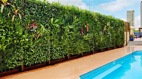 india s vertical garden is at bangalore