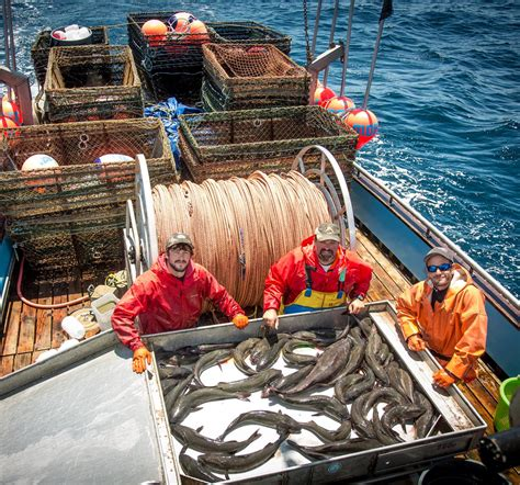 commercial fishing boat gear dangerous fishing may be endangered
