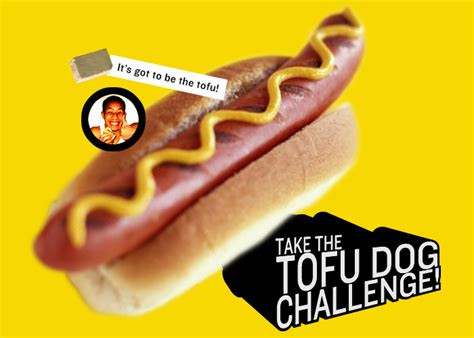 tofu for dogs tofu challenge
