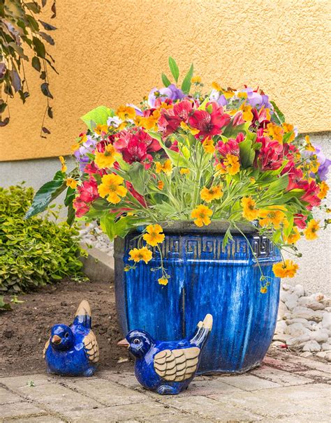 Container Planter Design Ideas by Beautiful Container Gardening Ideas Inspired Home