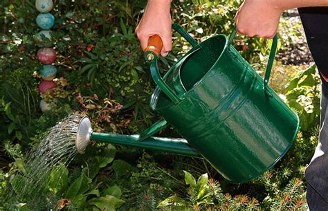 Garden In A Can by Ways Of Saving Water When Watering Your Garden Ideas 4 Homes