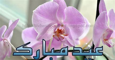 Adha Pink Adha Hijau A Dha free new e card eid ul adha mubarak flower wallpaper urdu text