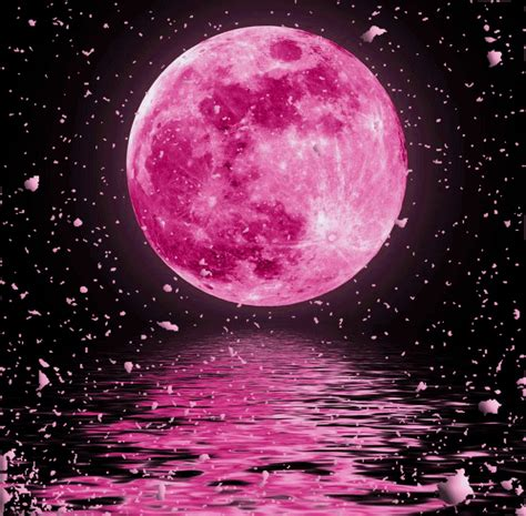 what is a pink moon pink moon by dizzymaverick on deviantart
