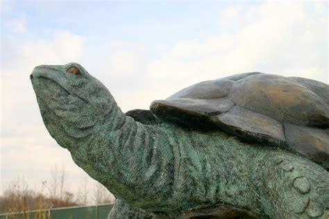 bronze standing tortoise turtle fountain