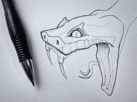 snake head sketch by zack smith dribbble
