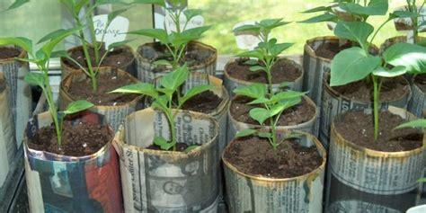 vasi biodegradabili come creare dei vasi biodegradabili casa naturale