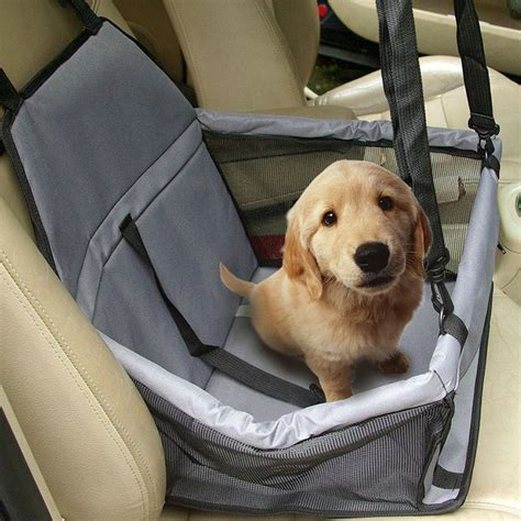 car names for dogs 25 best ideas about car seats on seat puppy car seat and car