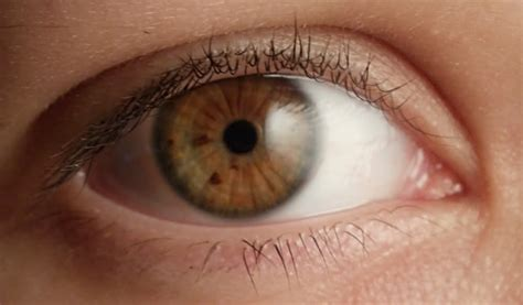 what color are my most eye color is my eye color i ask you friends